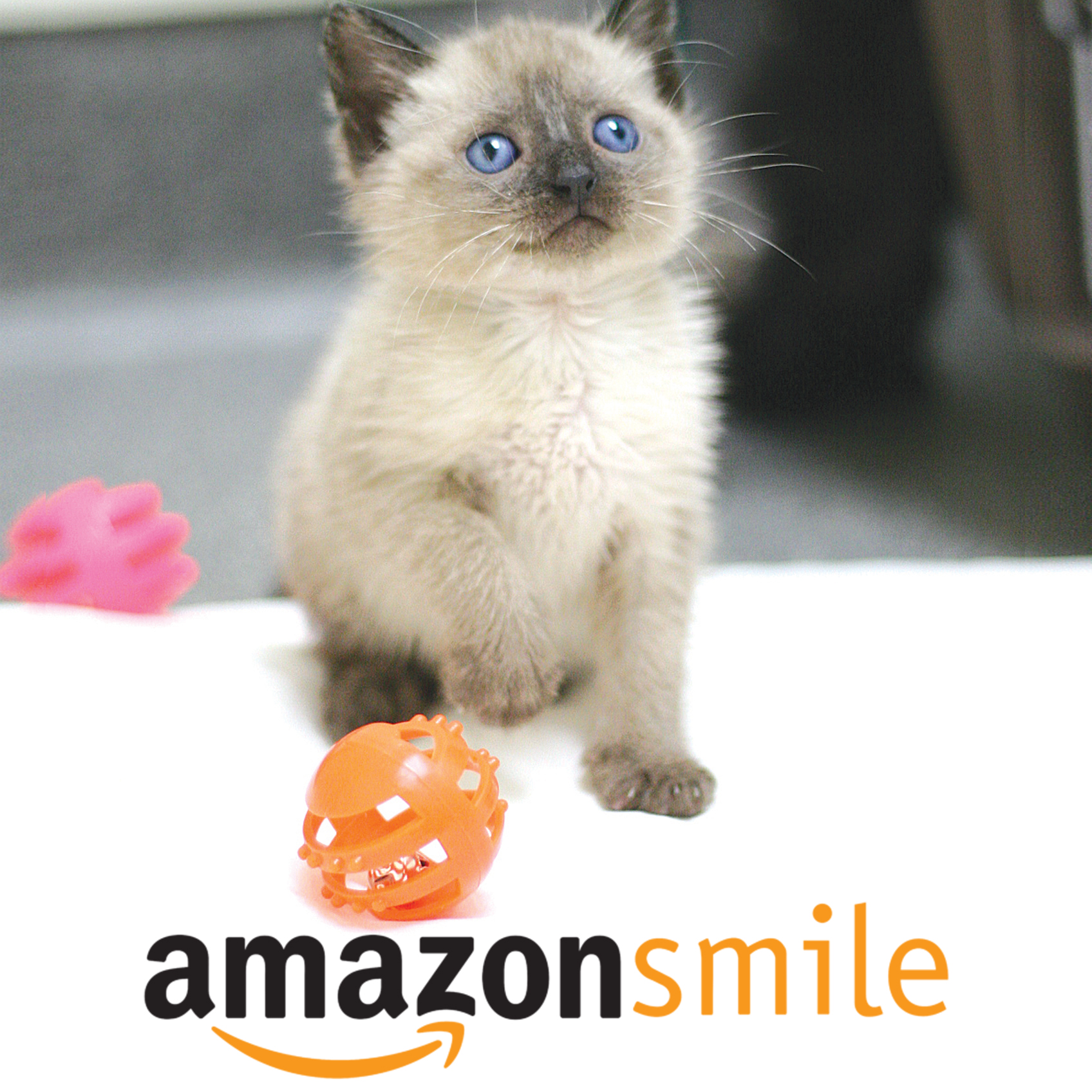 Make your purchases through HHS' Amazon Smile site and Amazon automatically donates 0.5% of the price of eligible purchases to the homeless pets at HHS.