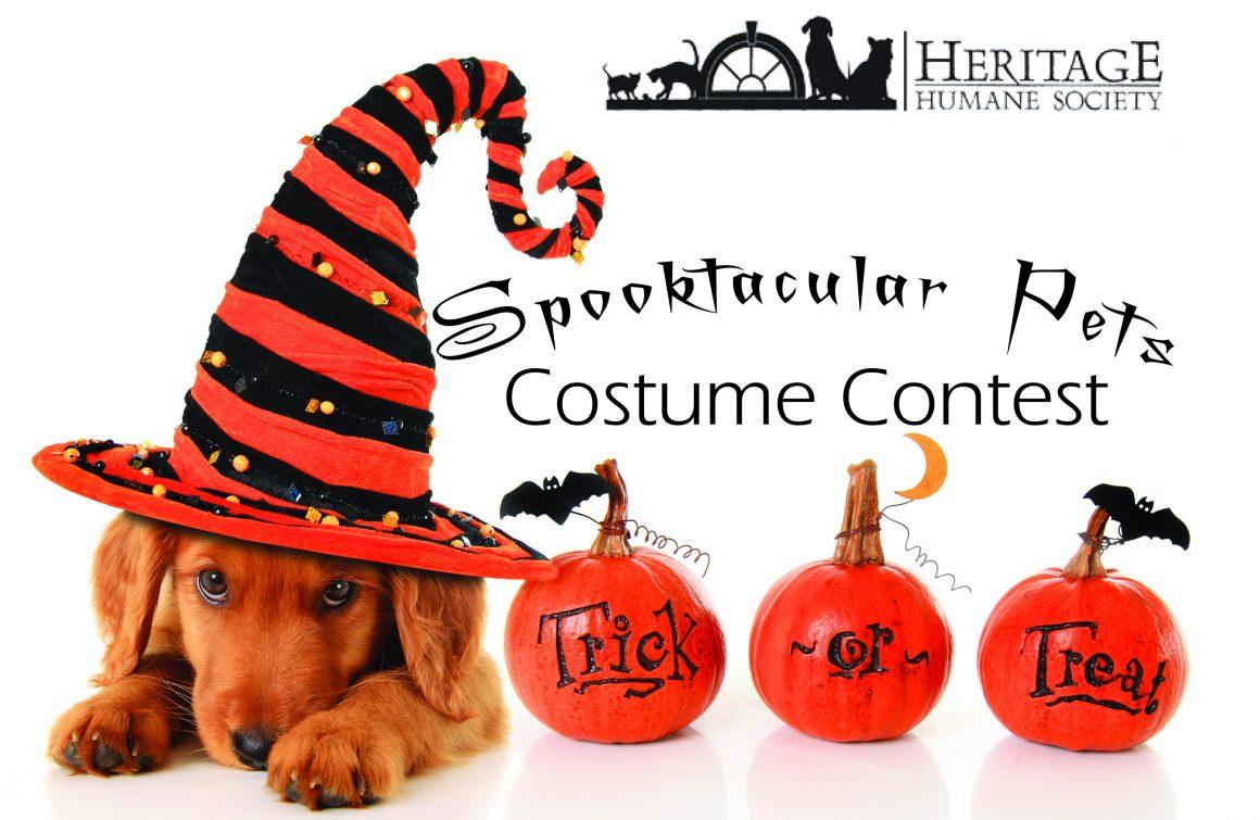 Spooktacular Pets – Costume Contest