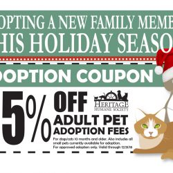 Holiday Adoption Coupon