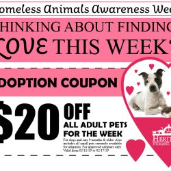 Homeless Animals Awareness Week Coupon