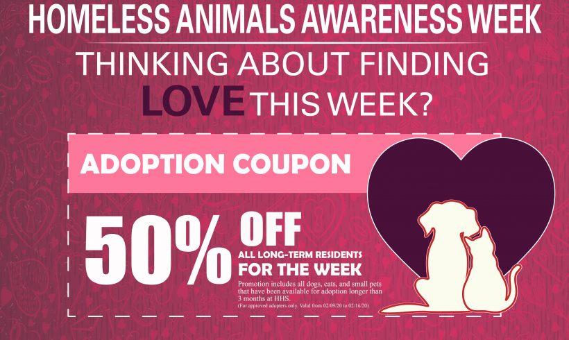 Homeless Animals Awareness Week Coupon