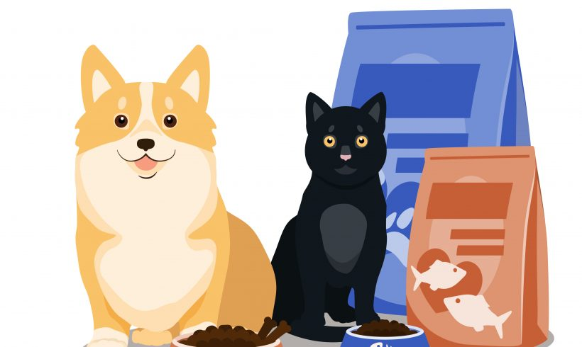 Kibble Kitchen is Here to Help