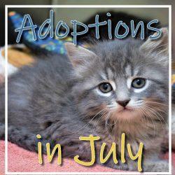 July Adoptions