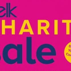 November Belk Charity Sale