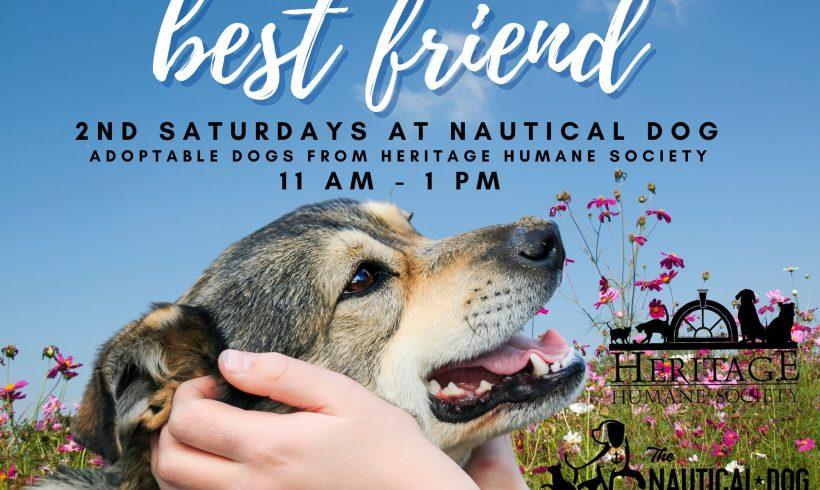2nd Sunday at Nautical Dog