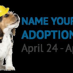 Construction Adoption Promotion