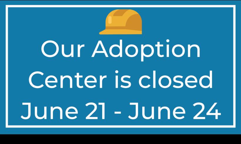 Adoption Center is Closed June 21 – June 24